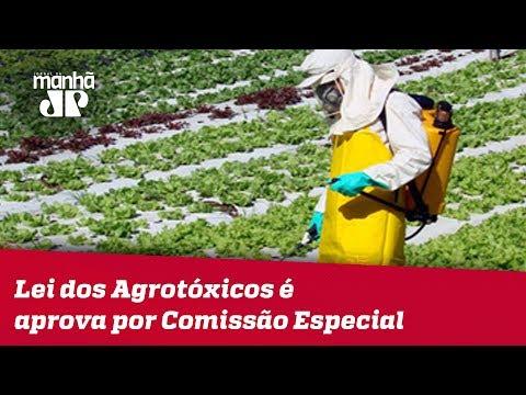 Proposta Polêmica Sobre Lei Dos Agrotóxicos é Aprova Por Comissão Especial