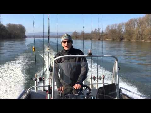 Andree's Angelreisen importer  łodzi Viking na rynek niemiecki
