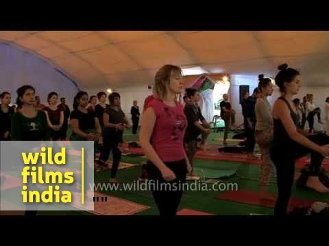Foreigners learn Yoga from Indian masters - International Yoga Festival