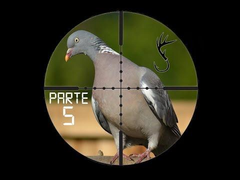 Caza De Palomas Y Perdices Con Rifle De Aire Parte 5
