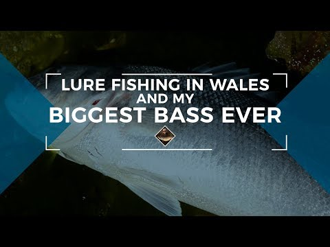 Lure Fishing In Wales And My Biggest Bass EVER!!