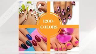 Dream Nails & Spa   Nail Salon Stafford Va