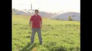 Biogas cerdos biodigestor