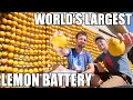 Lemon powered Supercar- WORLD'S LARGEST Lemon Battery
