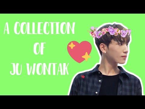 A Collection of Ju Wontak