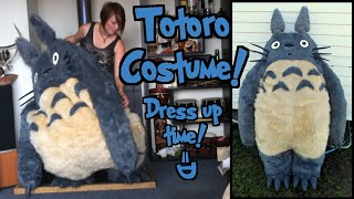 Totoro Costume - Dress up time!