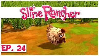 Welcome to slime rancher! in part 24 of our rancher series, we update the steam version (0.2.3b) and go on a quest find briar chicken! ► watc...