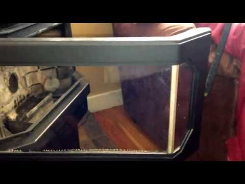 Cleaning Tempered Glass with Enviro & Window Cloths