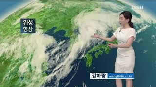 9시뉴스 강아랑기상캐스터 200806