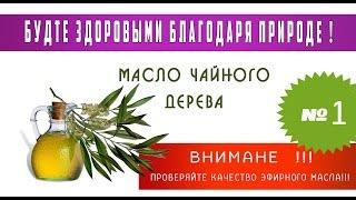 вылечить без лекарств. Чайное дерево.Ирина Бабушкина(, 2015-05-26T13:35:06.000Z)