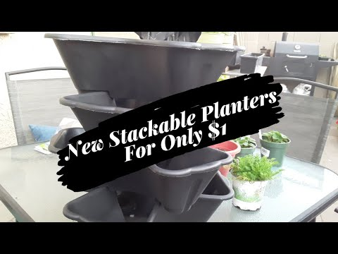 Dollar Tree And 99 Cent Only Stackable Planters - Expanding My Garden