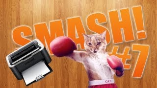 Animality. Видео 7: Коты атакуют - Cat attacks printer - Jealous Cat To Mobile