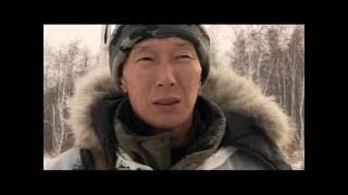 Охота на сибирскую косулю зимой видео