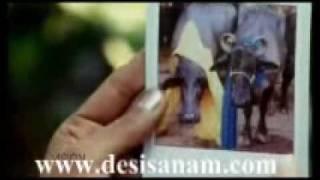 Ishq Huwa Excuse Me @ www.desisanam.com