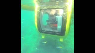 EGO Compact Semi Submarine Thumbnail