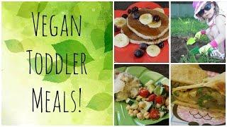 What My Vegan Toddler Ate Wednesday #7