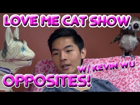 Love Me Cat   Opposites! with Kevin Wu