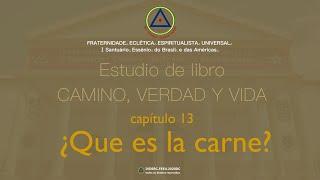 Estudio de libro CAMINO, VERDAD y VIDA - Cap. 13 ¿Qué es la carne?