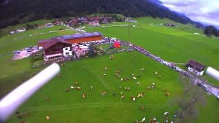 Almabtrieb 2014 Kramsach Camping Seehof, Haflinger Hof, Reintalersee.