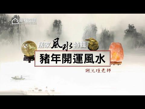 【居家風水特輯】謝沅瑾老師-豬年開運風水 [HD]