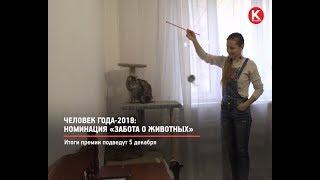 КРТВ. Человек года-2018: Номинация «Забота о животных»