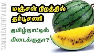 Why is the Watermelon Yellow Inside? Health Benefits | Tamil Health Tv
