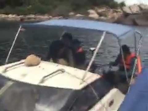 Seawater Boat Trip - เกาะเต่า