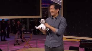 Sony | CES 2019 Presentation: aibo - unleash wonder