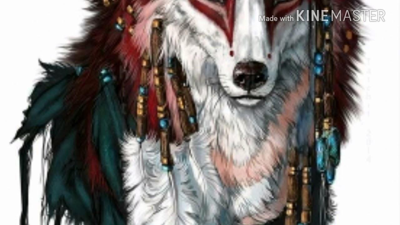 Os Lobos Mais Lindos Do Mundo Youtube