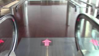 新千歳空港の国際線のエスカレーター