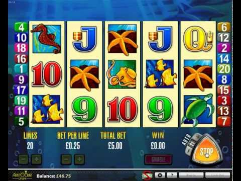 Feee online casino games dolphin treasure yonkers casino jobs