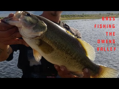 Owens Valley Bass Fishing. Bishop .ca