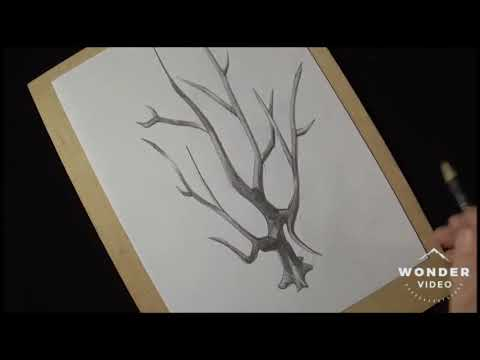 Vẽ tranh 3d bằng bút chì cực kì đơn giản đẹp ngất ngay