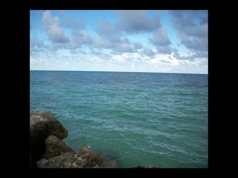 Starfish Trewlany, Jamaica
