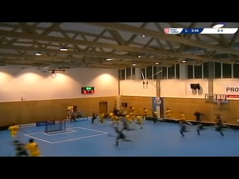 Sports Hall Roof COLLAPSES During Match in Czech Republic