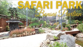 Bonsai Garden Tour: San Diego Safari Park Bonsai Pavilion