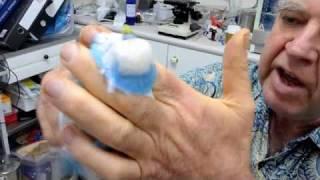 Budgie Health Care Health Check Part 1 080710 Mites & Respiratory