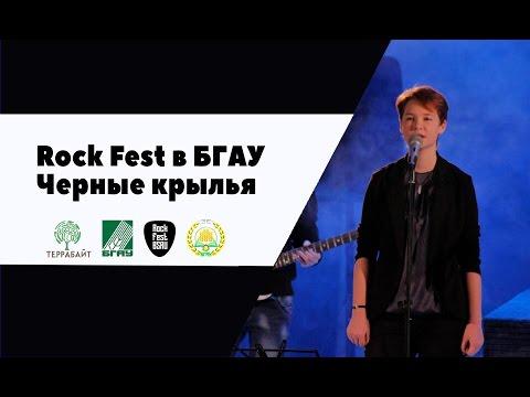 М.Р.Ф. - Новые чёрные крылья