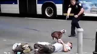 Pit bull enloquecido ataca a sus dueños - Pit bull attacks his crazed owners.