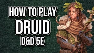 HOW TO PLAY DRUID