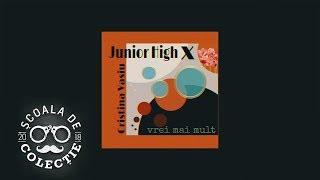 Junior High x Cristina Vasiu - Vrei Mai Mult Official Audio