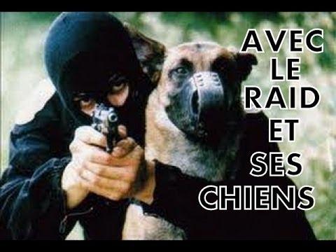 REPORTAGE - AVEC LE RAID ET SES CHIENS (unité d'élite de la police nationale)