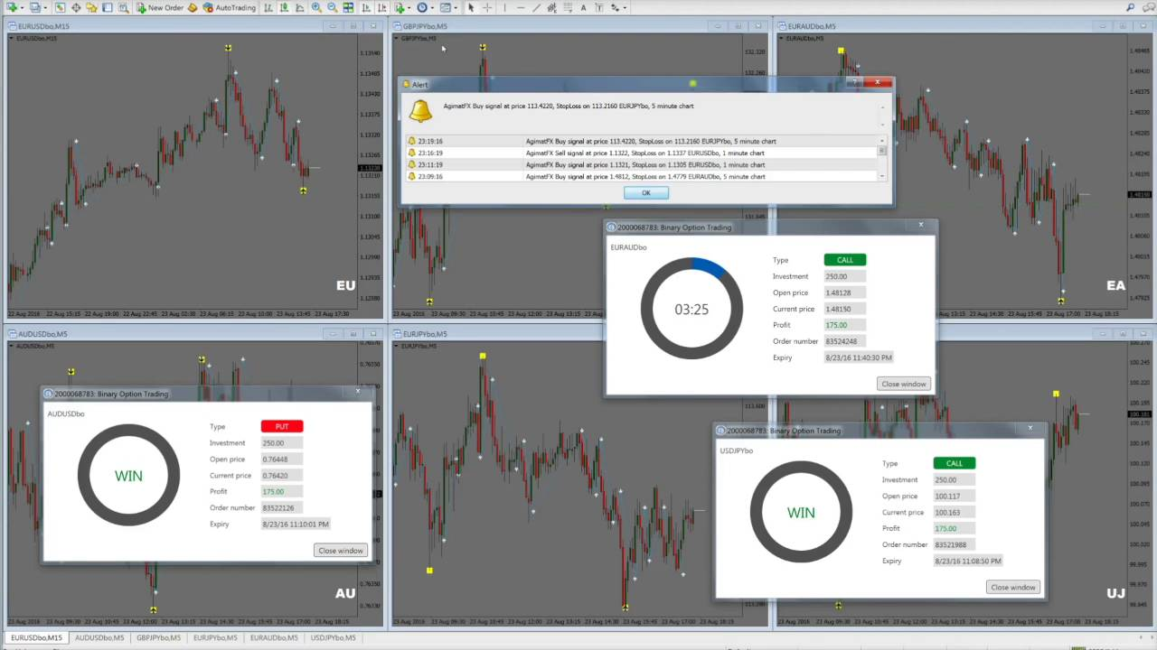 Binary options italiano