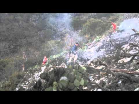 Muere Jenni Rivera en accidente de avión, Iturbide, Nuevo ...