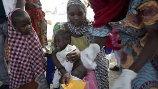 Alarming Levels of Malnutrition in Borno State