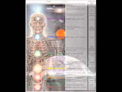 8 Circuits of Consciousness Model Introduction