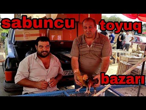 Sabuncu toyuq bazari 08.03.2020 #sabuncutoyuqbazari #toyuqbazari #sabuncubazari #tavukpazari #bazar