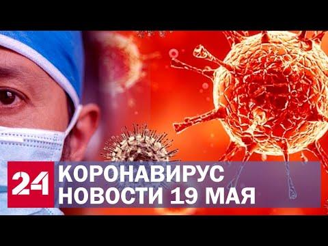 Коронавирус. Последние новости в России и мире. Самое актуальное на 19 мая