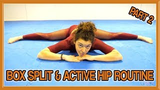 Box Split & Active Hip Routine (Part 2) | Follow Along Yoga Routine