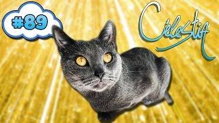 Celestia #89 : LE CHAT PREND LE POUVOIR & PRANK DE RICHE !